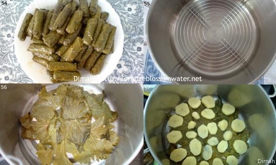 Dimah - http://www.orangeblossomwater.net - Yalanji 095