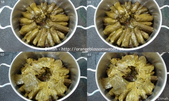 Dimah -http://www.orangeblossomwater.net - Yalanji 096