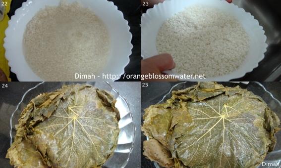Dimah - http://www.orangeblossomwater.net - Yalanji 7