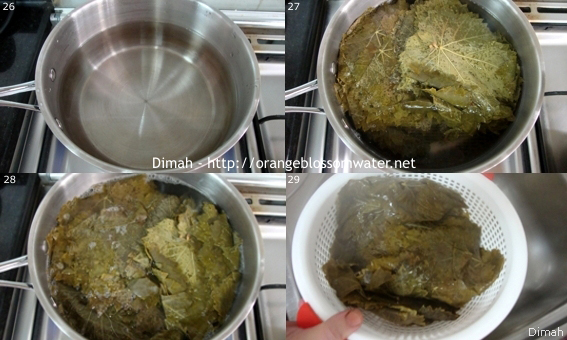 Dimah - http://www.orangeblossomwater.net - Yalanji 8
