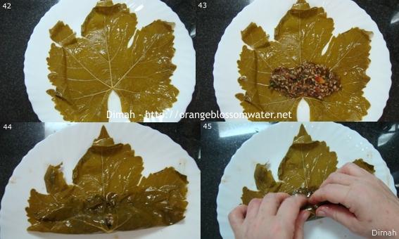 Dimah - http://www.orangeblossomwater.net - Yalanji 92