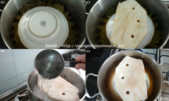 Dimah - http://www.orangeblossomwater.net - Yalanji 97