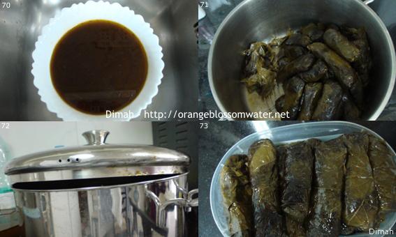 Dimah - http://www.orangeblossomwater.net - Yalanji 99