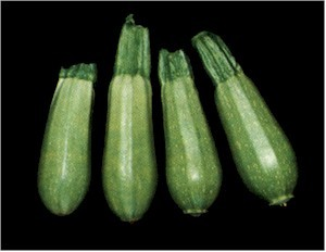 Dimah - http://www.orangeblossomwater.net - Vegetable Marrow