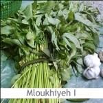 Dimah - http://www.orangeblossomwater.net - Mloukhiyeh I