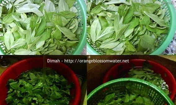 Dimah - http://www.orangeblossomwater.net - Mloukhiyeh I 3