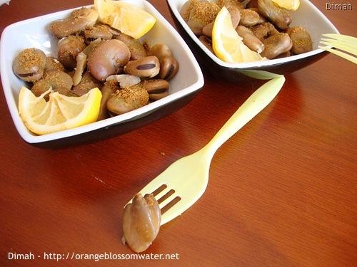 Dimah - http://www.orangeblossomwater.net - Foul Nabet 7