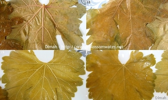 Dimah - http://orangeblossomwater.net - Grape Leaves 5