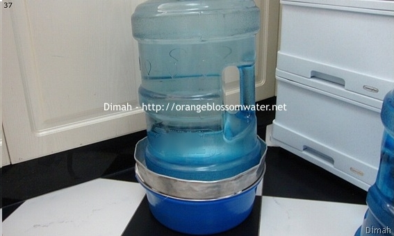 Dimah - http://www.orangeblossomwater.net - Makdous Al-Bathenjan 9