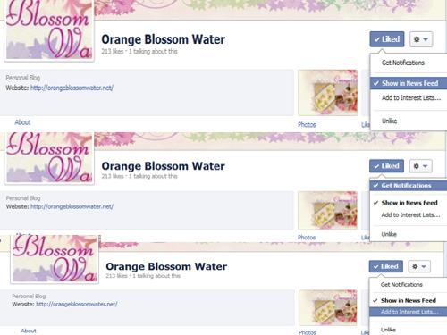 Dimah -http://www.orangeblossomwater.net - Feed
