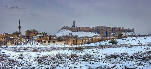 Dimah - http://www.orangeblossomwater.net - Aleppo CItadel 7 500