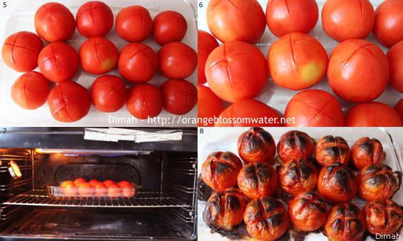 Dimah - http://www.orangeblossomwater.net - Kabab Khashkhash 2