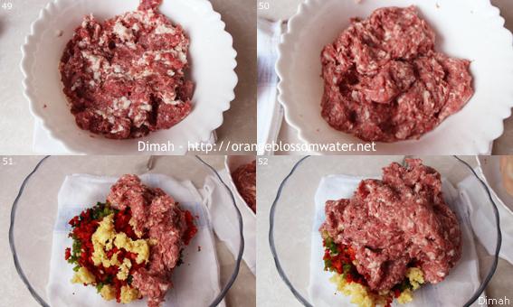 Dimah - http://www.orangeblossomwater.net - Kabab Khashkhash 93